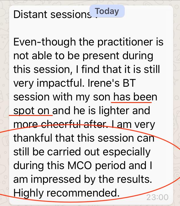 BodyTalk Distant Session_2